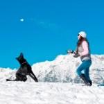 Voorjaarsvakantie 2013:  hond vaker mee op wintersportvakantie