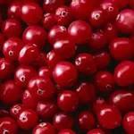 Zomerse cranberry recepten van Ocean Spray