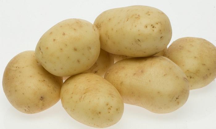 White star potato on white background