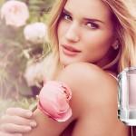 Rosie Huntington-Whiteley lanceert geur voor Marks & Spencer