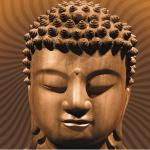 Tentoonstelling De Boeddha: van levensverhaal tot inspiratiebron