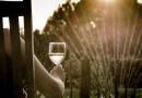 Heeft het huwelijk invloed op het drink gedrag?