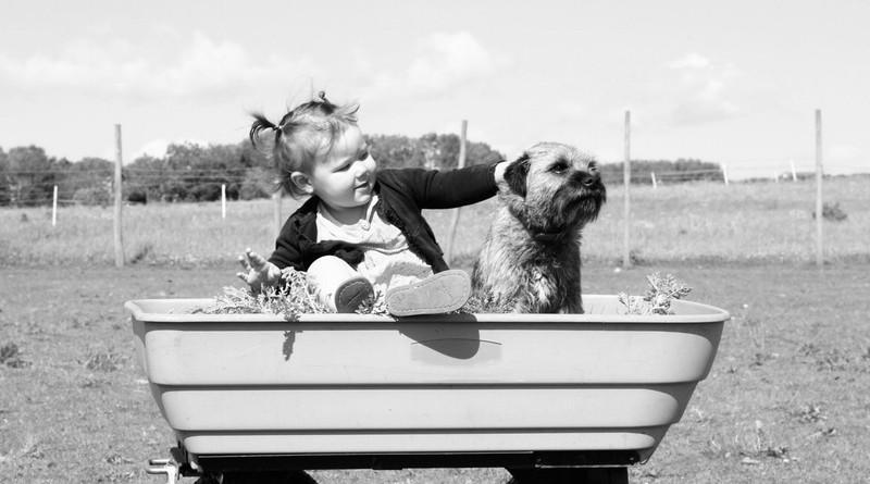 Huisdieren hebben een positief effect op kinderen