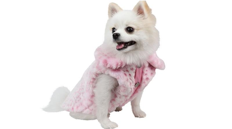 6 x stijlvolle hondenjassen