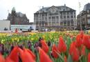 Nationale Tulpendag in Amsterdam
