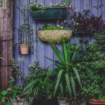 Hoe kies je de juiste tuinhekken voor je tuin?