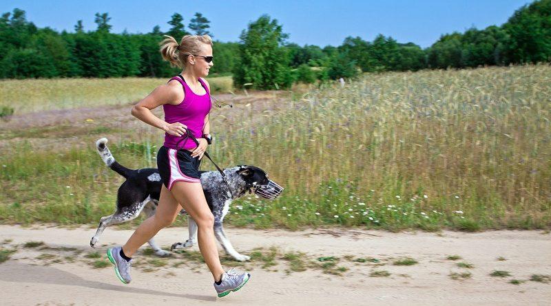 4 voordelen van het baasje zijn van een hond