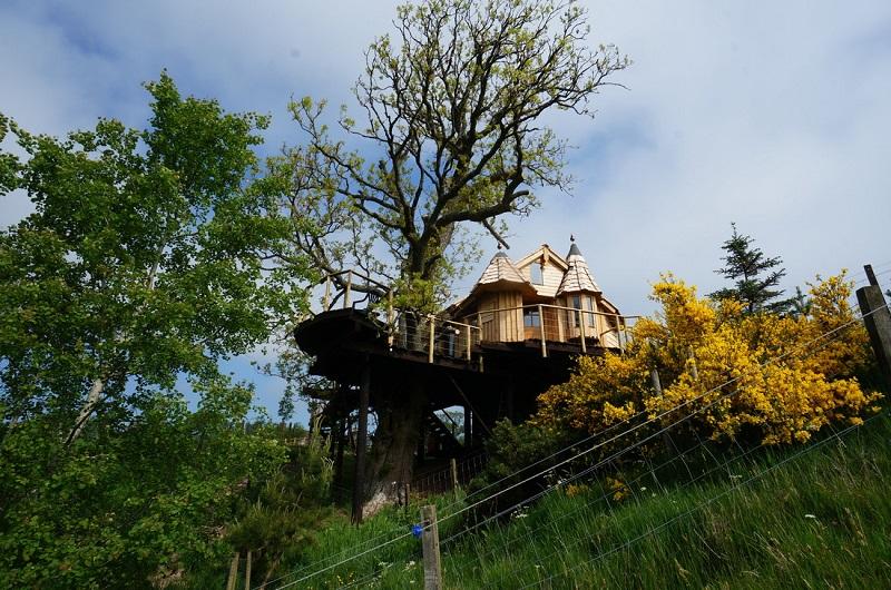 Tree Howf, Schotland