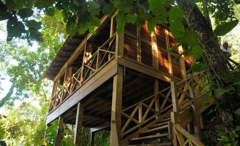 Kanopi House, Jamaica