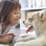 Lachende gezichten zijn aantrekkelijk voor honden, dankzij oxytocine