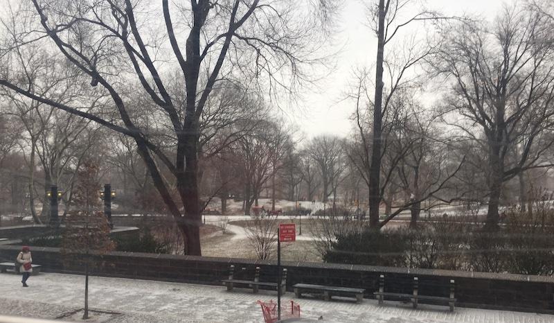 Central Park @ winter